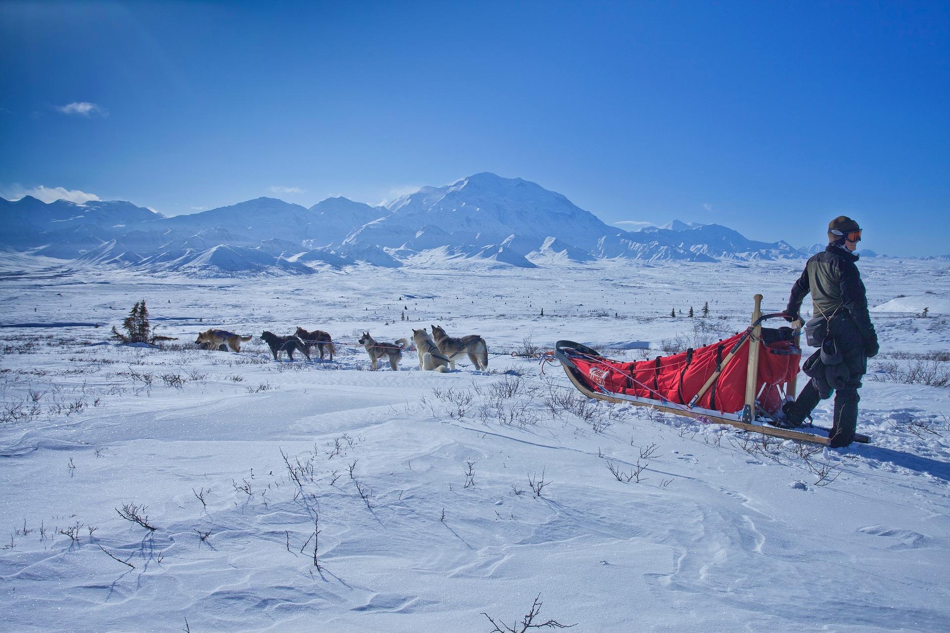 Rundreise Alaska: Empfehlungen & Vergleich (10/21)