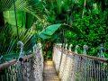 Rundreise Amazonas: Empfehlungen & Vergleich (01/21)
